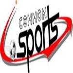 Common sport Icon