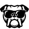 Bulldog Banknotes Icon