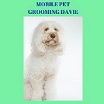 Mobile Pet Grooming Davie Icon