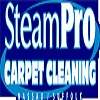 SteamPro Carpet Cleaning Icon