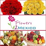 Send Flowers to Mexico Icon