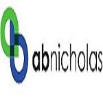 A. B. Nicholas Icon
