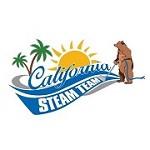 California Steam Team Icon