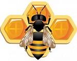 Buy Honey Icon