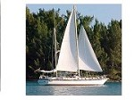 Bermuda Wind Sail Charters Icon