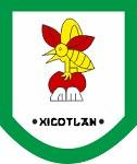 Municipio de Xicotlan, Puebla Icon