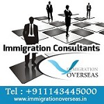Immigration Consultants | Visa Experts Icon