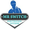 Mr Switch Electrician Anthem Icon