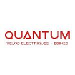quantume bikes Icon