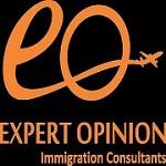 ExpertOpinion Icon
