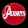 Beachclub Peanuts Icon