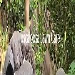 Tuscaloosa Lawn Care Icon
