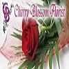 cherryblossomflorist Icon