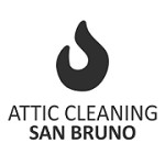 Attic Cleaning San Bruno Icon