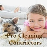 Pro Cleaning Contractors League City Icon