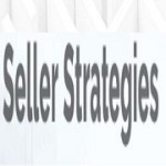 Seller Strategies International Icon