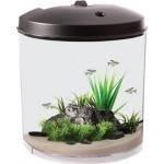 5 Gallon Aquarium Icon