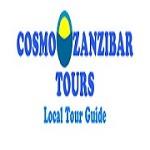 Cosmo Zanzibar Tours Icon