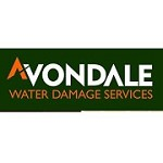 Avondale Water Damage Services