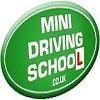 Mini Driving School Icon