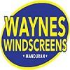 Waynes Windscreens Mandurah Icon