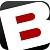 B The Artist LLC Icon