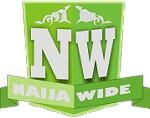 Naijawide Media Icon
