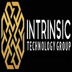 Intrinsic Technology Group Icon