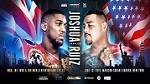 UFC 238 Live Stream Icon