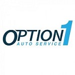 Option 1 Auto Service - S Westnedge Ave Icon