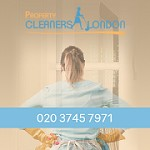 Property Cleaners London Icon