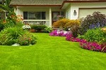 Salinas Landscape Maintenance, LLC Icon