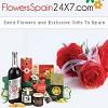 Flowersspain24x7 Icon