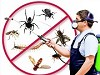 Insect Killer Service Icon