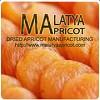 Malatya Apricots Dried Apricots Manufacturing Co Inc Icon