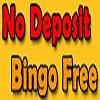 Bingo Gaming Icon