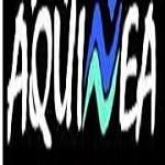 Aquinea Icon