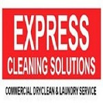 Express Cleaning Solutions Icon