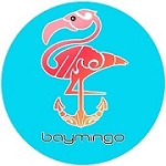 Baymingo - Boat rental services Icon