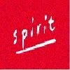SPIRIT IMMOBILIER Icon