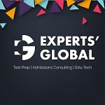 Experts Global Icon