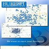 Buresh Home Solutions, Inc Icon