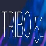 Tribo Marketing Icon