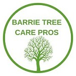 Barrie Tree Care Pros Icon