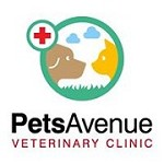 Pets Avenue Icon