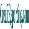 CreditReporting.com Icon
