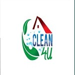 Cleaning Company Icon