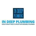 In Deep Plumbing Icon