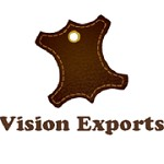 Vision Exports Icon