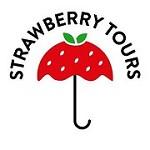 Strawberry Tours - Free Walking Tours Buenos Aires Icon